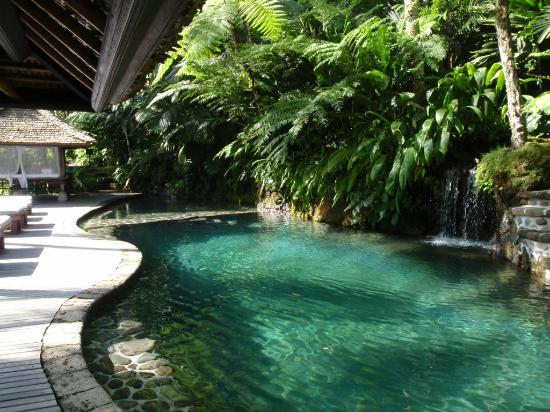 COMO Shambhala Estate, Bali: Spring fed pool