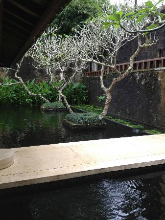 COMO Shambhala Estate, Bali: Pond