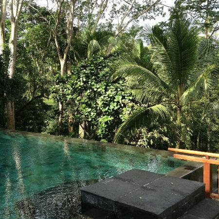 ‪‪COMO Shambhala Estate, Bali‬: Green