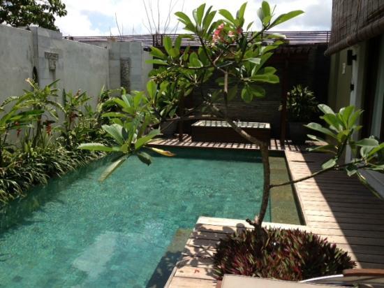 Pradha Villas: pool & jacuzzi