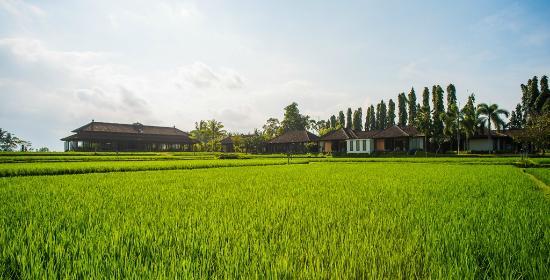 The Chedi Club Tanah Gajah, Ubud, Bali – a GHM hotel: Exterior View of The Restaurant & The Spa