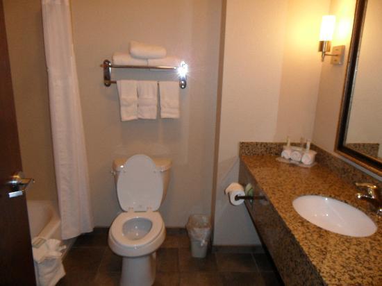 Holiday Inn Express & Suites Clinton: Baño