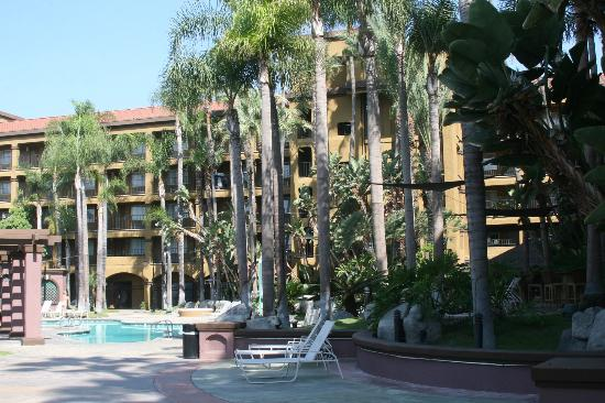 Four Points by Sheraton Anaheim: Outside pool area