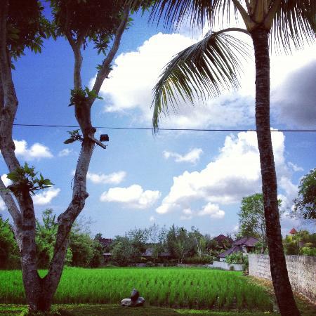 Saren Indah Hotel: green field views