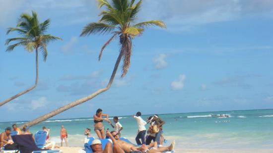 VIK Hotel Arena Blanca: Beach Scene