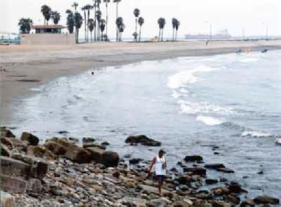 Monterey Inn: cabrillo beach
