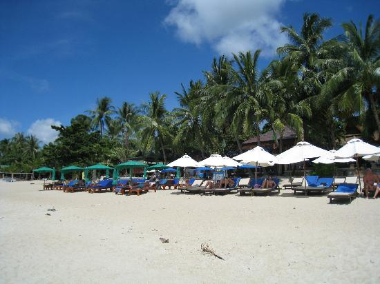 Thai House Beach Resort: Beach