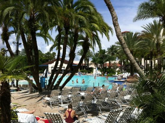 Hard Rock Hotel at Universal Orlando: The pool is cool :)