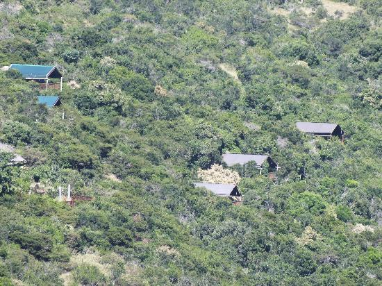 Inkwenkwezi Private Game Reserve Safari Lodge: Inkwenkwezie