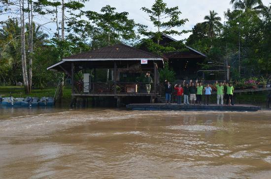 Kinabatangan Riverside Lodge: Departing from Kinabatangan 