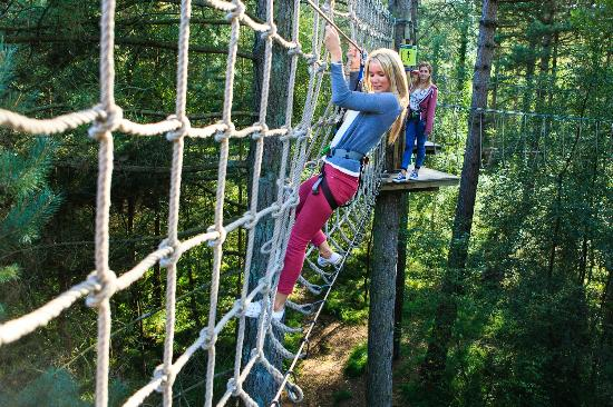 Go Ape at Forest of Dean, Gloucestershire: Cargo net