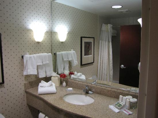 Hilton Garden Inn Houston NW/Willowbrook : The bathroom