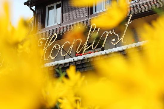 Hotel Hochfirst Garni: Willkommen im Hotel Hochfirst in Saig