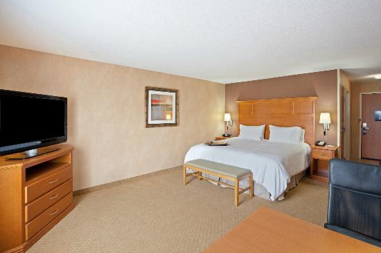 Hampton Inn Detroit / Utica - Shelby Township: King