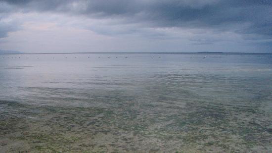 أماريلا ريزورت: Beach Area 