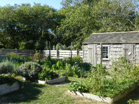 Oldest House (Jethro Coffin House) : Summer Garden