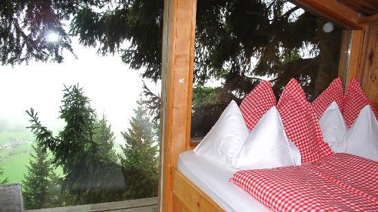 Das Almdorf - World Peace Eco Resort: Blick aus dem Baumhaus