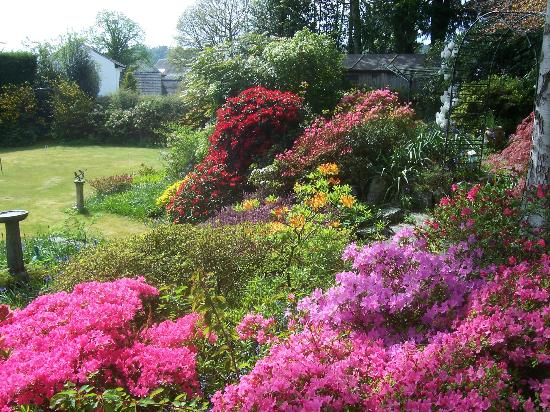 Fairfield Garden Guest House: more of this lovely garden to look at.
