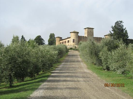 Scenic wine tours in Tuscany: Castello Gabbiano winery