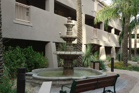 Sheraton Desert Oasis: Courtyard