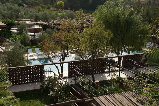 Domaine Malika: Poolbereich und Zimmerausblick