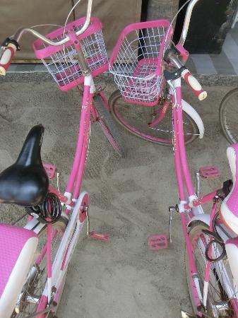 Les Villas Ottalia: les vélos...