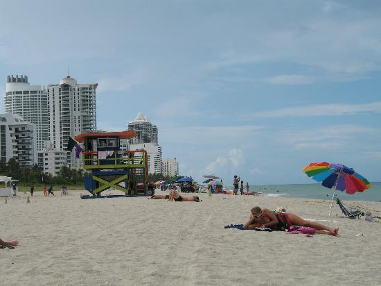 Miami Beach En Face De L HÔtel Picture Of Red South Hotel Tripadvisor