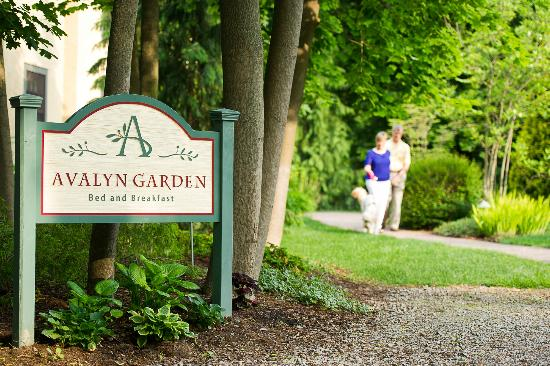 Avalyn Garden Bed and Breakfast: a quiet spot within a busy city