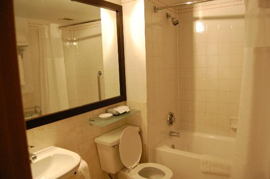 BEST WESTERN PLUS Montreal Downtown-Hotel Europa : Clean bathroom(we did mention to the front desk that the shower head plate was loose)