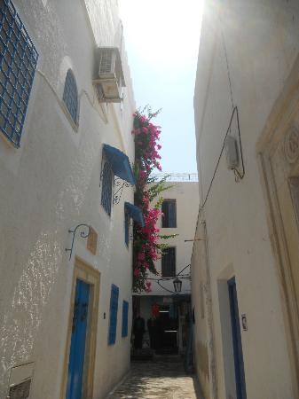 Medina of Hammamet: Enge Gassen in der Medina
