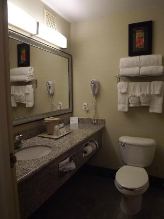 Comfort Suites Denver Tech Center: Bathroom