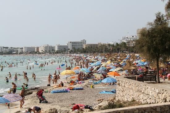 Apartamentos Cristina Villas: the beach