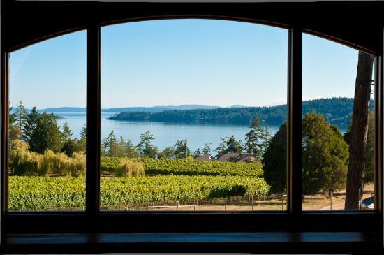 Saturna Island Family Estate Winery: Upstairs Bistro window