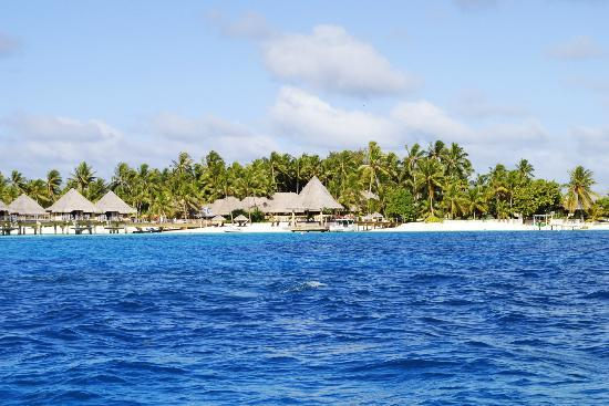 Bora Bora Ecolodge : View across the Bora Bora lagoon - is that blue for real?