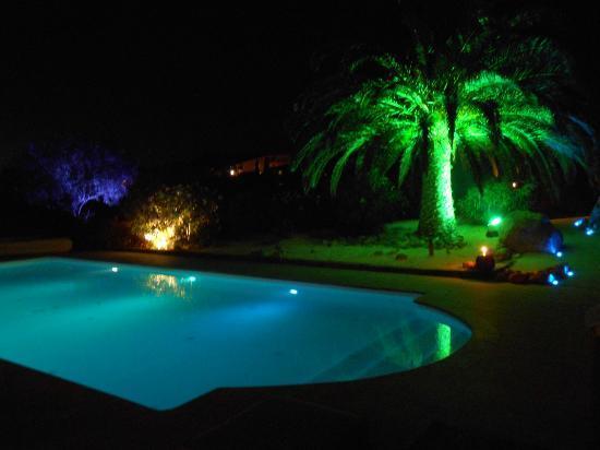 Hôtel Restaurant Bartaccia : piscine