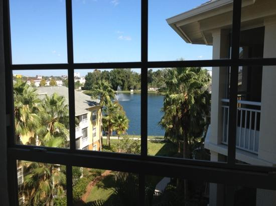 Wyndham Cypress Palms: view from room