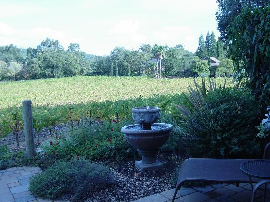 The Wine Country Inn: View from the back of the Vintner's Cottage