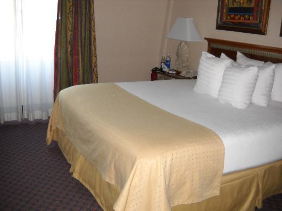 Holiday Inn New Orleans - Chateau Lemoyne: Room was small and okay