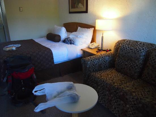 Crystal Springs Motel: our motel room