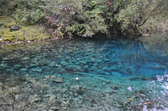 Jiuzhaigou Natural Reserve: lake