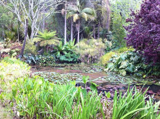 Magic Cottages at Takou River: Garden