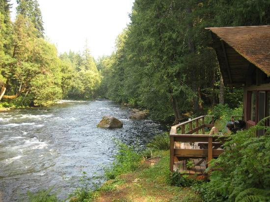 Cedarwood Lodge: View of Little River (Cabin #4) and the river