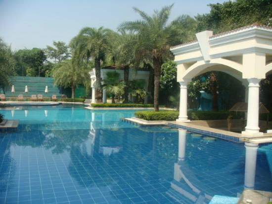 The Palms - Town & Country Club: pool