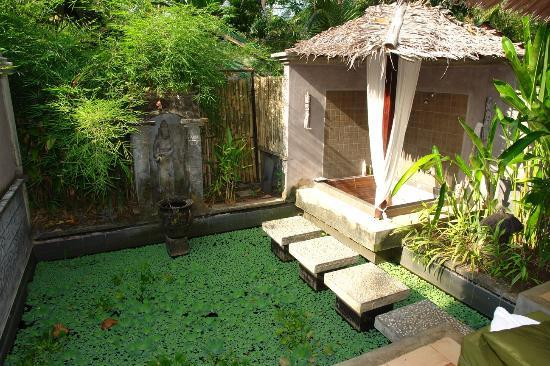 The Village Bunaken: Part of the spa
