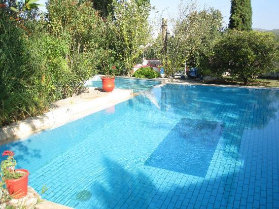 Bakkhos Guesthouse: Pool area