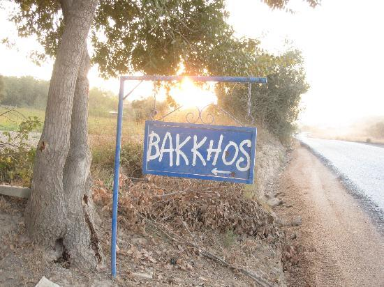 Bakkhos Guesthouse: entrance