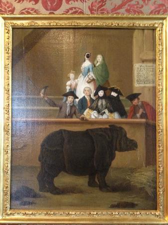 Ca' Rezzonico: Pietro Longhi Mostra del Rinoceronte 1751