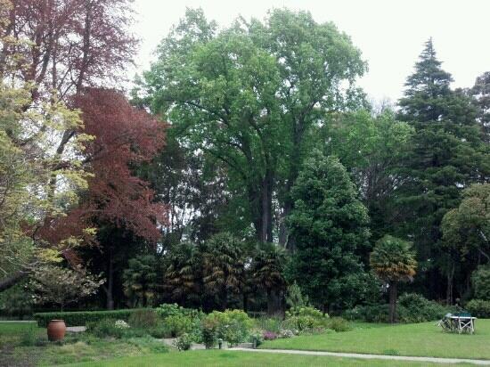 Acton Estate: front lawn