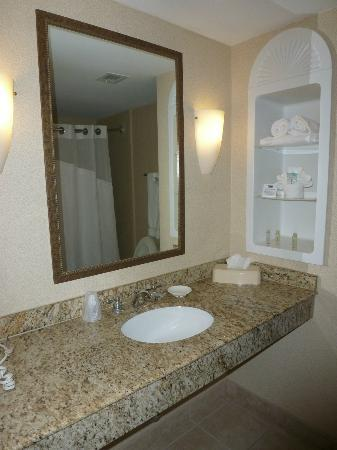 Holiday Inn Express Auburn: Bathroom