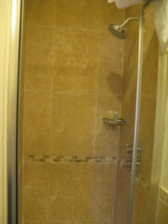 Lime Tree Hotel: Shower
